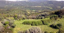 Stazzu with land  for Sale Luogosanto