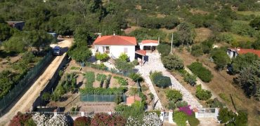 Villa with garden for sale in Olbia -Sardinia