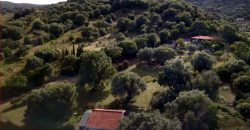 Country home for Sale Olbia – Sardinia