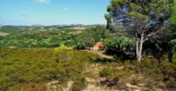 Country home for sale 6 km from Rena Maiore