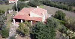 Azienda agricola in vendita Sardegna