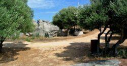 Rustici in vendita Arzachena -Sardegna