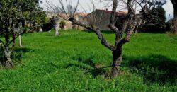 Fattoria in vendita in Sardegna