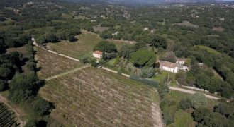 Farmstead For Sale In Sardinia