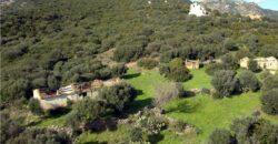 Terreni e rustici in vendita a Olbia rif Muriscu