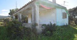 Case di campagna in vendita Olbia Rif. Chirialza