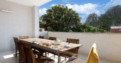 Panoramiche case in vendita San Pantaleo Olbia con giardino