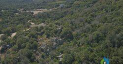 Stazzu in vendita a San Pantaleo rif. Casa di Steve